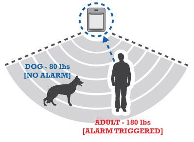 Alarm Trigger